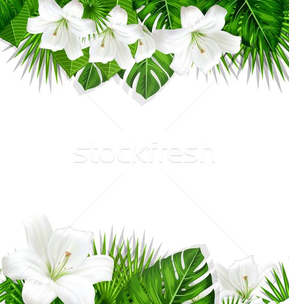 çerçeve şube tropikal yaprakları beyaz çiçekler zambak Stok fotoğraf © smeagorl