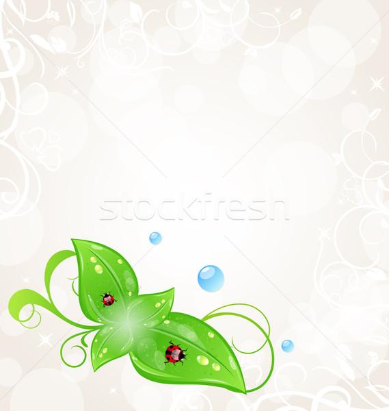 Környezetbarát zöld levelek katicabogarak illusztráció terv levél Stock fotó © smeagorl