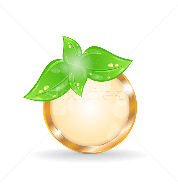 Golden circle frame with eco leaves Stock photo © smeagorl