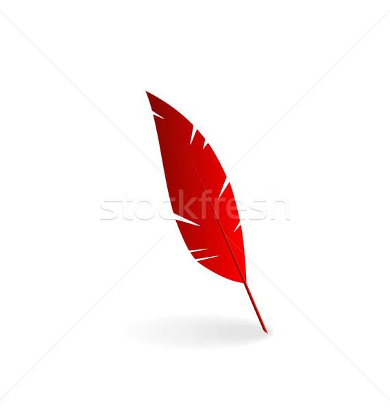 赤 羽毛 孤立した 白 実例 鳥 ストックフォト © smeagorl