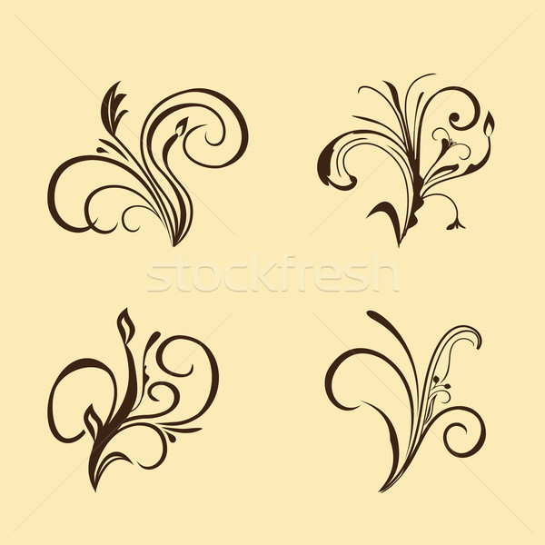 Set of floral elements. Brown Stock photo © smeagorl