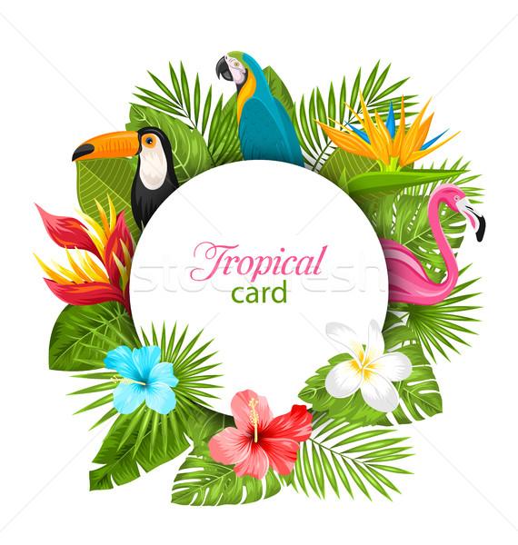 Nyár kártya trópusi növények hibiszkusz flamingó Stock fotó © smeagorl