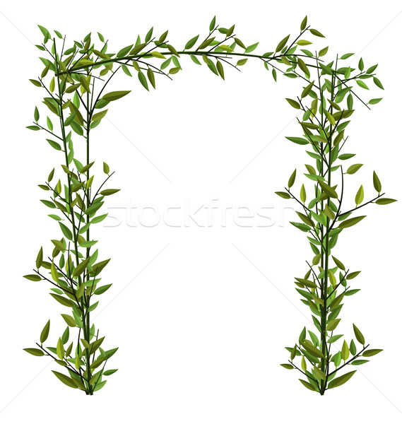 Arch Twined Bamboo Branch Green Leafs Stock photo © smeagorl