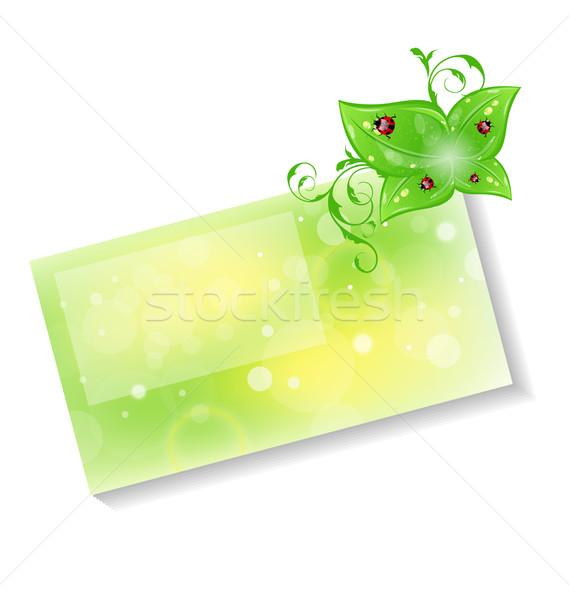 Kártya zöld levelek vektor papír absztrakt Stock fotó © smeagorl