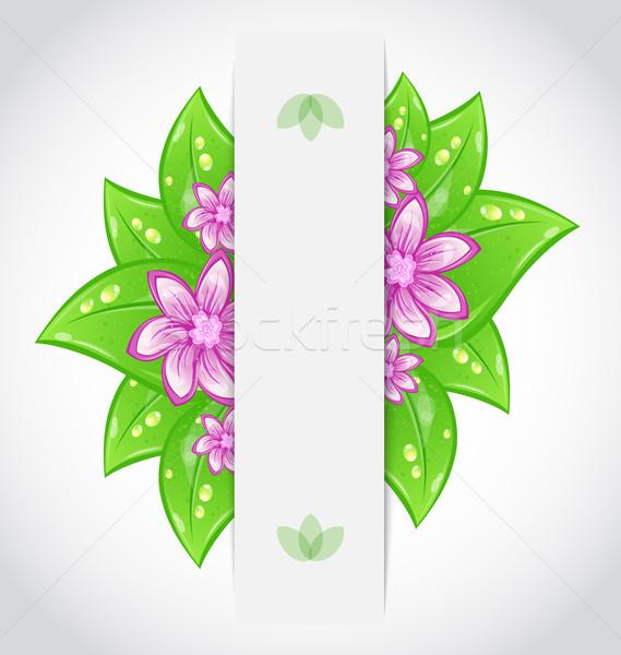 Bio design respectueux de l'environnement bannière feuilles vertes illustration Photo stock © smeagorl