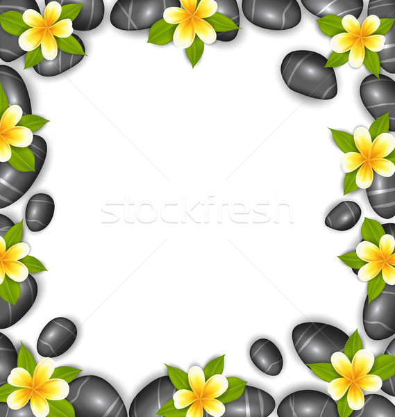 Border Made in Stones and Tropical Beautiful Flowers Stock photo © smeagorl