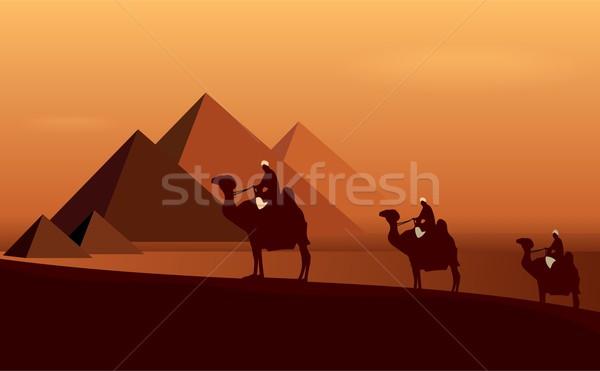 Stock photo: Caravan camels