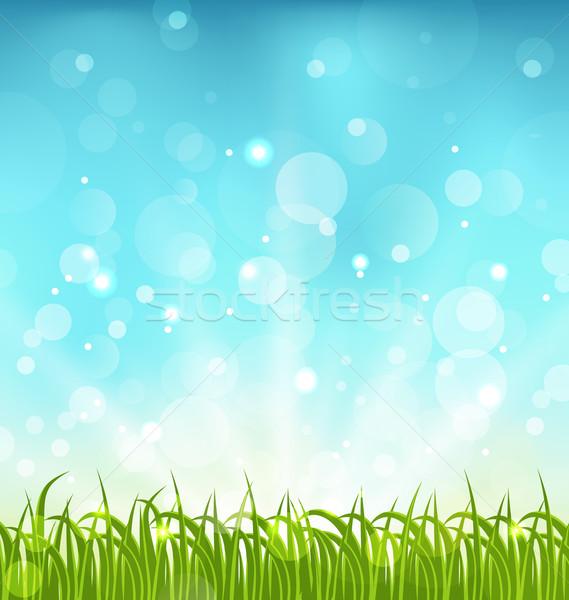 лет природы трава иллюстрация небе пейзаж Сток-фото © smeagorl