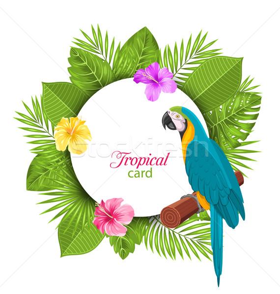 Trópusi kártya papagáj színes hibiszkusz virágok Stock fotó © smeagorl
