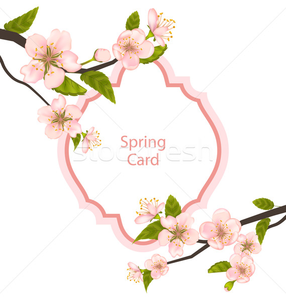 Romantic Spring Card with Blossoming Tree Branches Stock photo © smeagorl