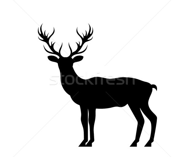 Silhouette Deer, Stag, Reindeer Isolated on White Background Stock photo © smeagorl
