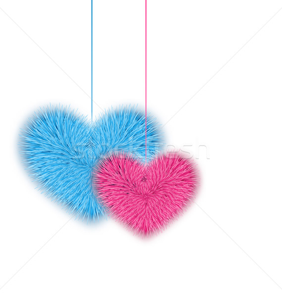 Fur pink and blue hearts for Valentines Day isolated on white ba Stock photo © smeagorl