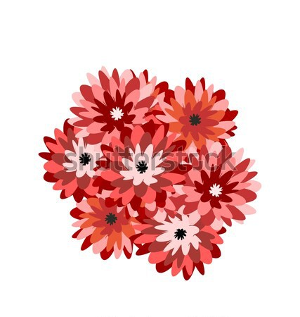 Illustration a bunch of flowers aster Stock photo © smeagorl