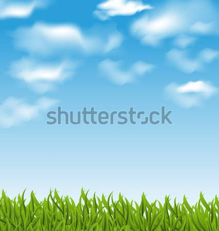 Spring background with green grass and sky Stock photo © smeagorl