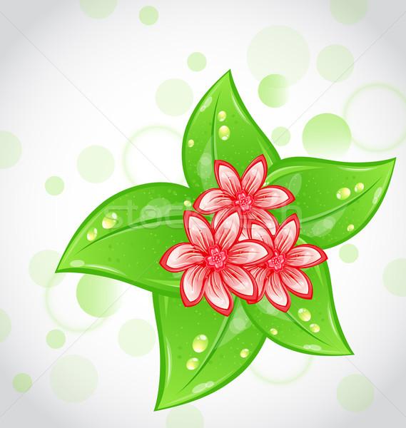 весенние цветы листьев иллюстрация цветок весны счастливым Сток-фото © smeagorl