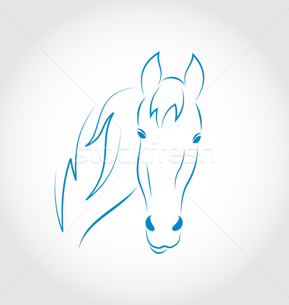 Hand drawn head horse isolated on white background Stock photo © smeagorl