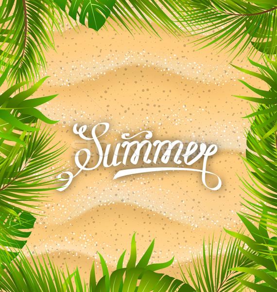 Természetes keret homokos textúra egzotikus levelek Stock fotó © smeagorl
