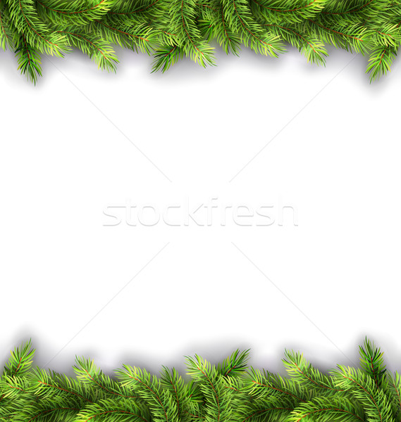 Natural Framework with Fir Twigs Stock photo © smeagorl