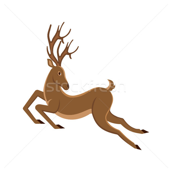 Cute Deer Cartoon Running. Reindeer Moving. Leaping Stag Stock photo © smeagorl