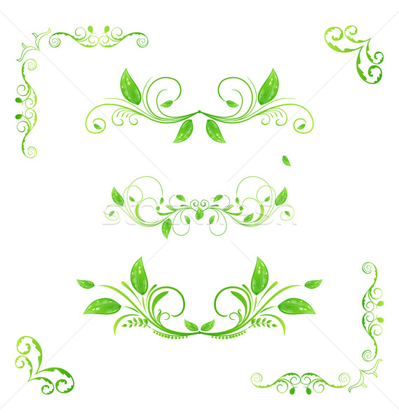 Foto d'archivio: Set · verde · floreale · elementi · eco · foglie