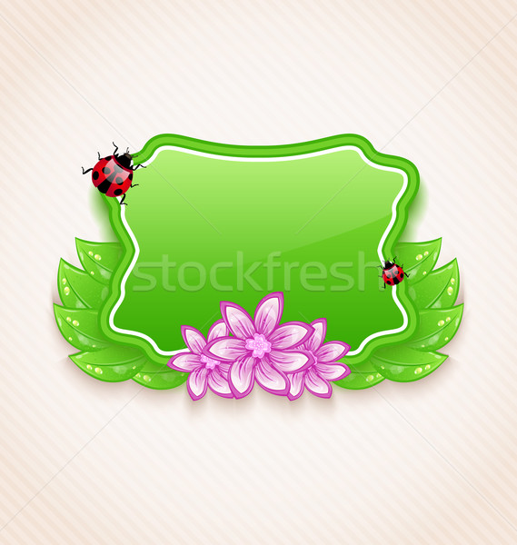 Cute spring card with flower, leaves, lady-beetle Stock photo © smeagorl