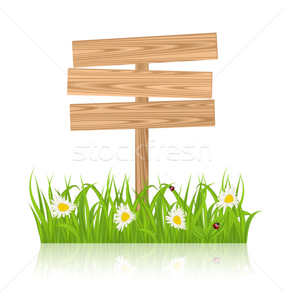 Wooden signboard for guidepost with field green grass and camomi Stock photo © smeagorl
