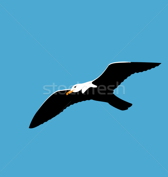 Soaring seagull in blue sky, seabird isolated on blue background Stock photo © smeagorl