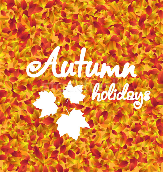 Autumn Holiday Background, Leaves Texture Stock photo © smeagorl