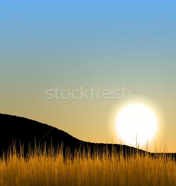 Восход солнце горные травой поле иллюстрация пейзаж Сток-фото © smeagorl
