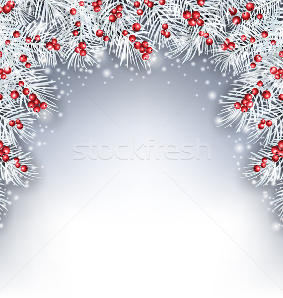 Holiday Background with Silver Fir Twigs and Holly Berries Stock photo © smeagorl