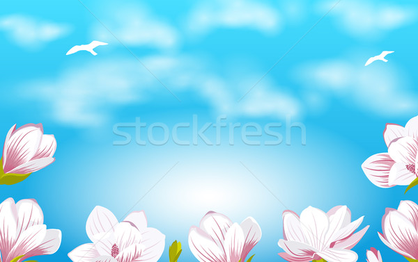 Summer Background with Beautiful Magnolia Flowers Stock photo © smeagorl