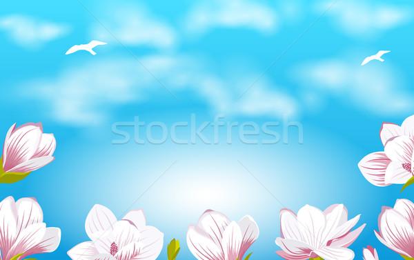 Zomer mooie magnolia bloemen illustratie bewolkt Stockfoto © smeagorl