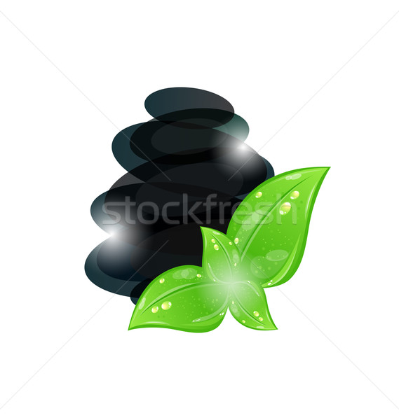 Cairn stones with eco green leaves isolated on white, spa backgr Stock photo © smeagorl