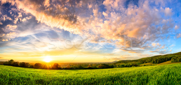Panorama of a colourful sunset on a green meadow Stock photo © Smileus