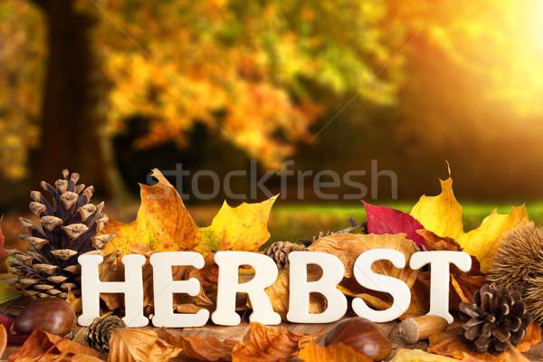 German word for autumn Stock photo © Smileus