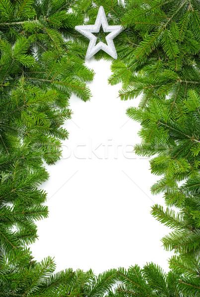Creative рождественская елка границе свежие зеленый ель Сток-фото © Smileus