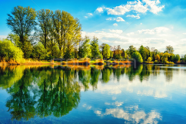 Tranquil lakeshore landscape with blue sky and water Stock photo © Smileus