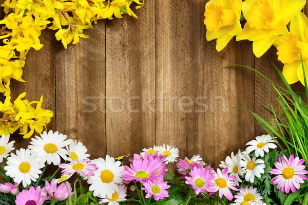 Bahar çiçekleri renkli taze uzun çim Stok fotoğraf © Smileus