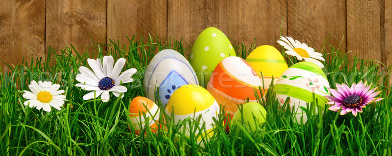 Easter eggs and flowers in grass Stock photo © Smileus