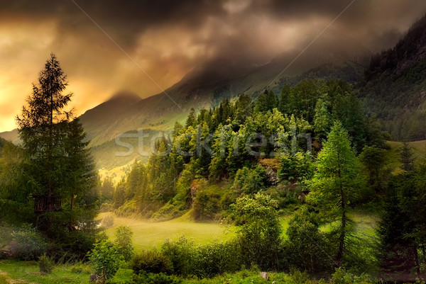 Vallei dramatisch stemming berg landschap evergreen Stockfoto © Smileus