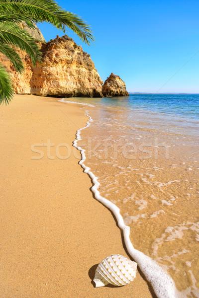 Schilderachtig strand warm zonlicht ontspannen Geel Stockfoto © Smileus