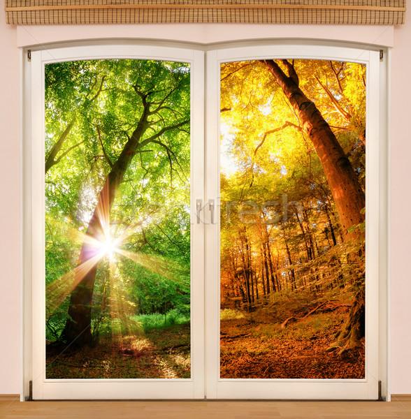 Stock photo: Magic window showing season change
