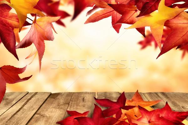 природного кадр осень сцена красный Сток-фото © Smileus