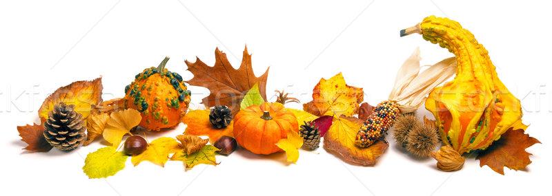 Autumn decoration arrangement Stock photo © Smileus