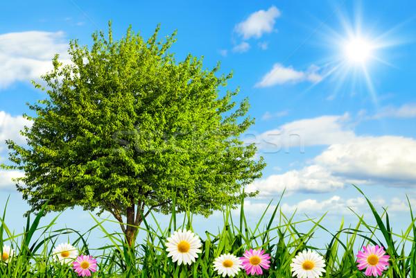 Happy paradise in nice sunshine Stock photo © Smileus