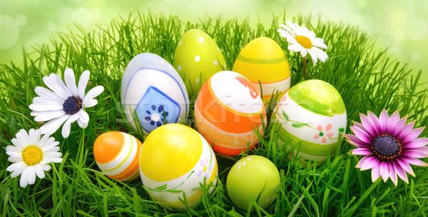 Easter Eggs kwiaty trawy kolorowy wiosennych kwiatów świeże Zdjęcia stock © Smileus