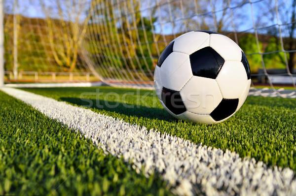 Soccer ball behind the goal line Stock photo © Smileus