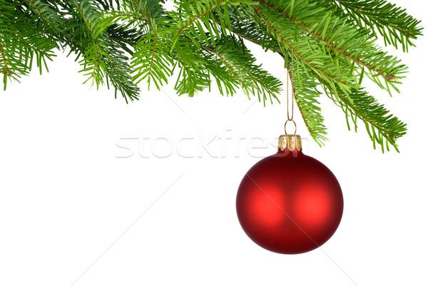 赤 クリスマス 安物の宝石 絞首刑 新鮮な 緑 ストックフォト © Smileus