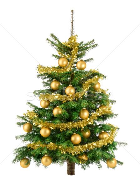 Bereketli noel ağacı altın temizlemek dekore edilmiş Stok fotoğraf © Smileus