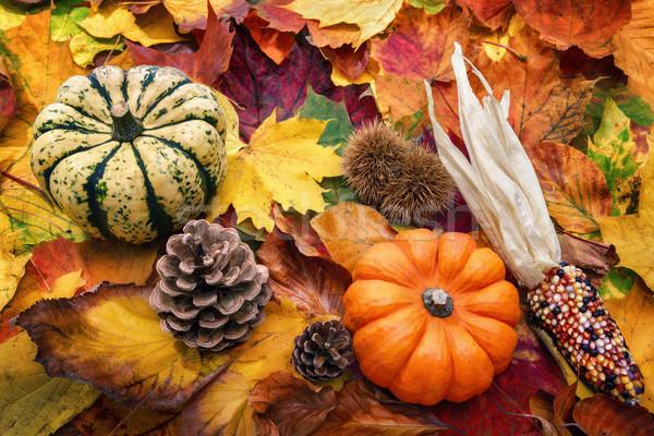 Natural autumn decoration Stock photo © Smileus